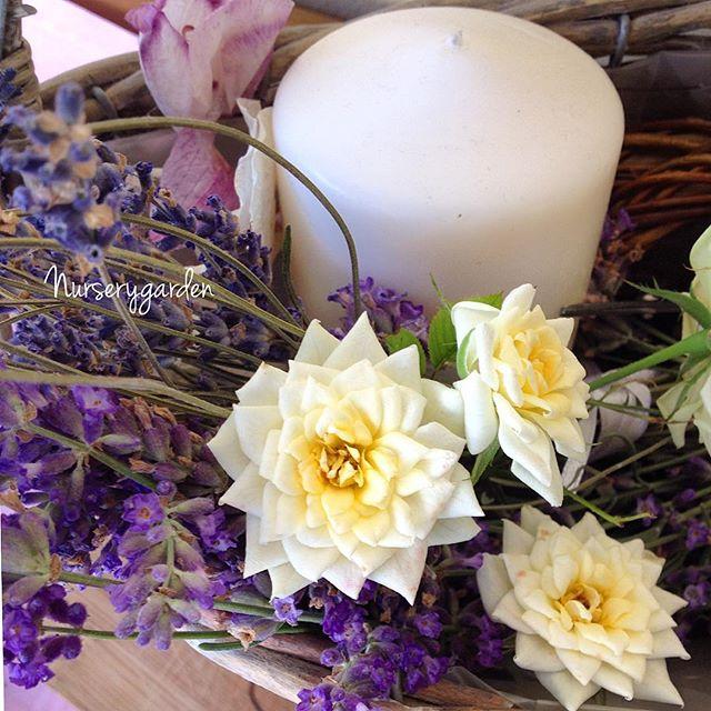 nurserygarden_2015-09-09_09-35-47