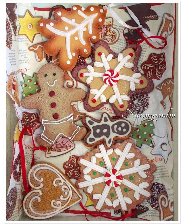 Biscotti Finti Per Albero Di Natale.Tempo Di Biscotti Mynurserygarden Com